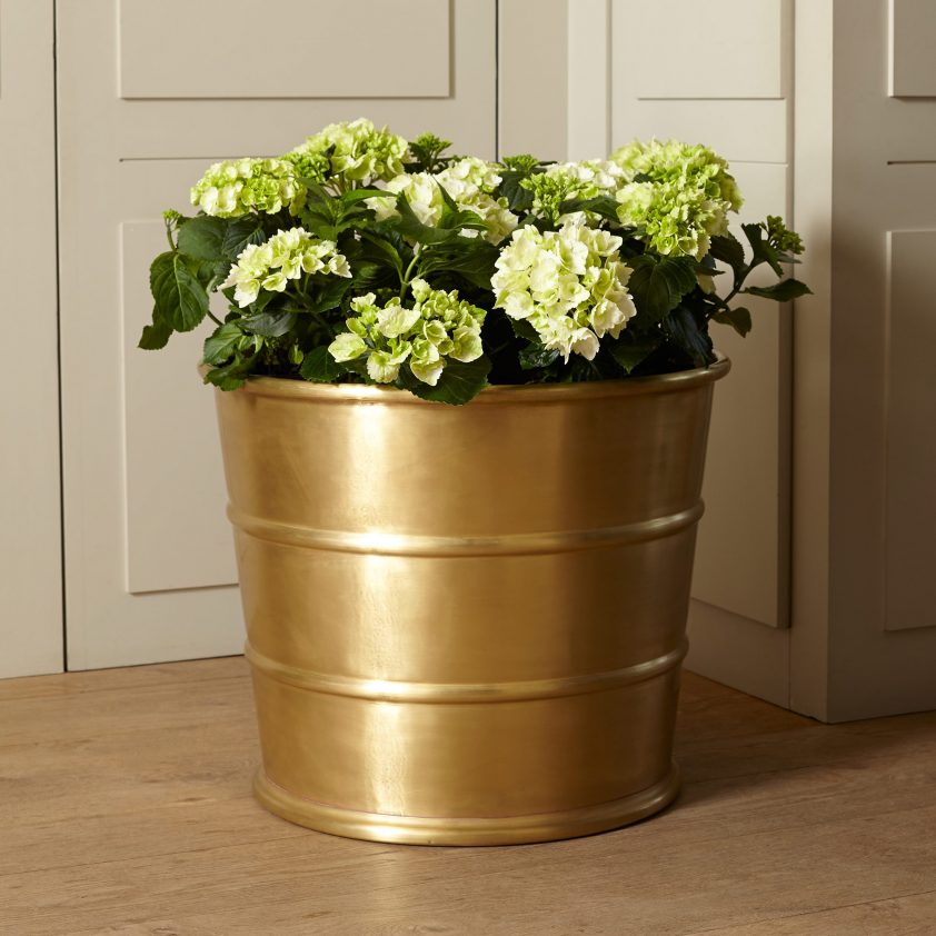 Small Two Ribbed Planter in Brass with Matt Lacquer
